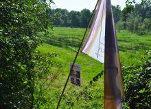 Plukken bij de paarse vlag!