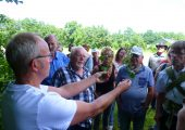 Karst Meijer laat verschillende bramensoorten zien op de bloei-excursie
