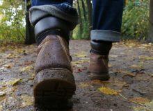 Brommels! wandeltocht 25 km vanuit De Sûkerei