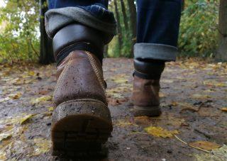 Rompaad wandelingen Noardburgum: Ritskeboskpaad