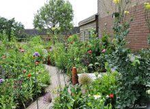 Open tuin Het Hoekje