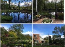 Open tuin familie Van der Veen