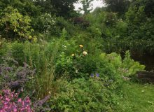 Open tuin Lieuwe Stins (GEANNULEERD)