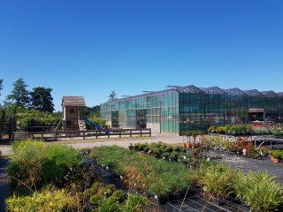 Tuininspiratie bij Bosma boomkwekerij – groencentrum
