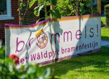 Steun Brommels!, stem NFW