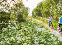 Fietstocht Ontdek de Noardlike Fryske Wâlden (127 km)